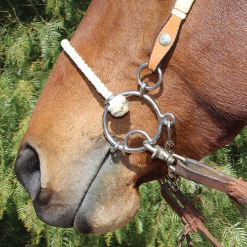 Twisted Snaffle Mouth Combo Bit