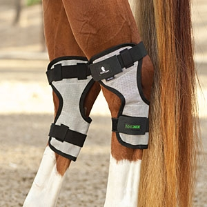 MAGNTX Magnetic Therapy Hock Wraps - PAIR